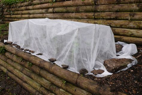 Cold Weather Plant Protection: Tips For Protecting Plants ...
