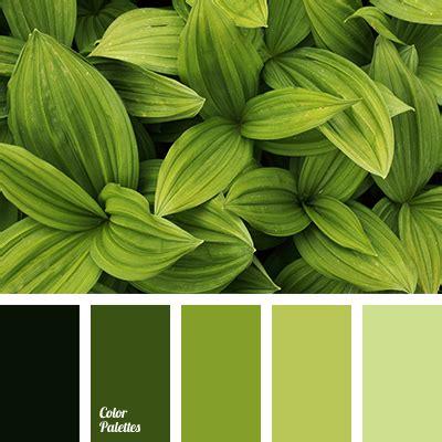 Color Palette #3221 | Color Palette Ideas