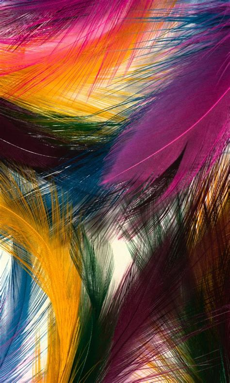 Colorful Feathers Mobile Phone Wallpaper | 480 800 HD ...