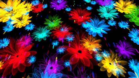 Colorful Flowers by AS_100 | VideoHive