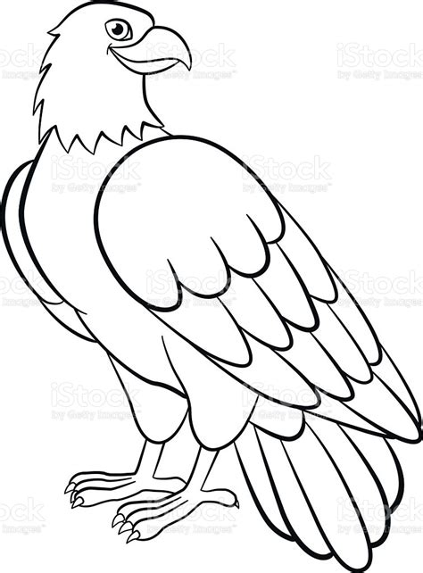 Coloring Pages Wild Birds Cute Eagle Smiles Stock ...