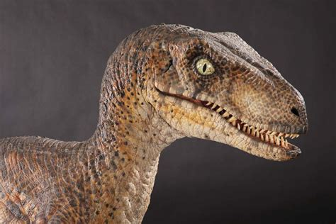 Come With Me, If You Want To Live: Jurassic Park IV ...