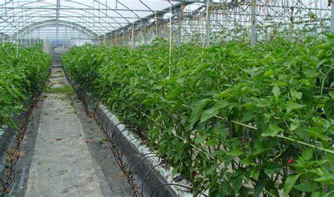Comisión de fertilizantes – AEFA – Asociación Española de ...