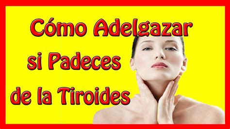 Cómo Adelgazar si Padeces de la Tiroides   Como adelgazar ...