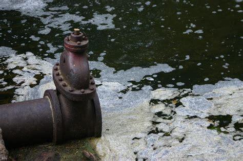 Cómo afecta la contaminación del agua al medio ambiente