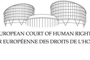 Cómo apelar ante el Tribunal Europeo de Derechos Humanos ...