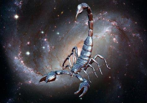 ¿Cómo conquista a un Escorpio? | Fantasy GP
