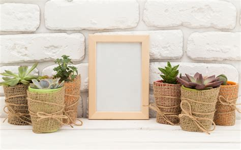 Cómo decorar tu piso barato, barato, barato   Enalquiler.com