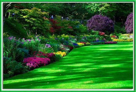 Como decorar un jardín con flores