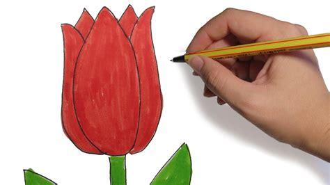 COMO DIBUJAR FLORES: Tulipan facil paso a paso   YouTube