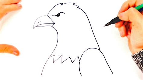 Cómo dibujar un Águila paso a paso   Dibujo fácil de ...