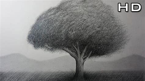 Cómo Dibujar un Árbol Realista a lápiz Paso a Paso Para ...