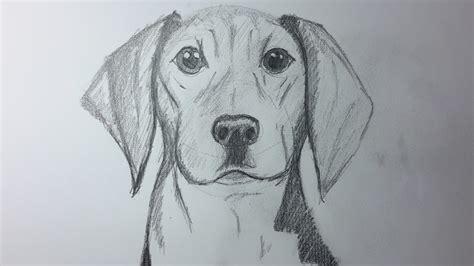 Como Dibujar un Perro paso a paso, How to draw a Dog. [El ...
