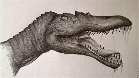 Cómo dibujar un Spinosaurus, dibujando dinosaurios paso a ...