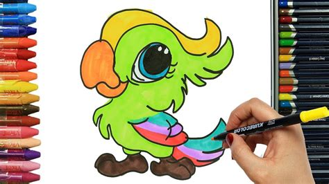 Cómo Dibujar y Colorear loro | Dibujos Para Niños   YouTube