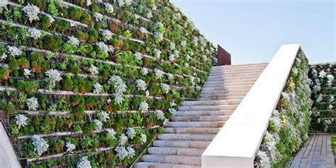 Cómo fertilizar un muro verde   Terranova Lombricultores