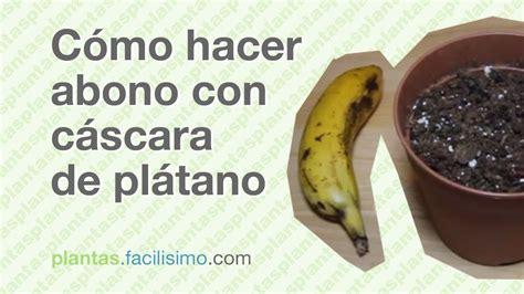 Cómo hacer abono con cáscara de plátano | facilisimo.com ...