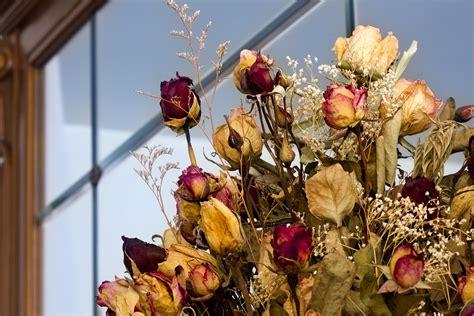 Como hacer centros de mesa con flores secas bellas y ...