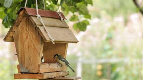 Cómo hacer una casa para pájaros fácil paso a paso