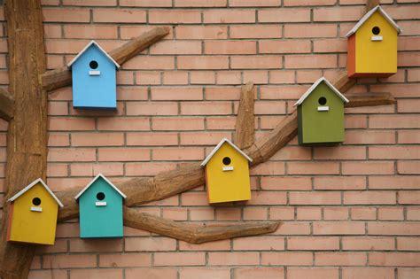Cómo hacer una casita para pájaros paso a paso | DIY ...