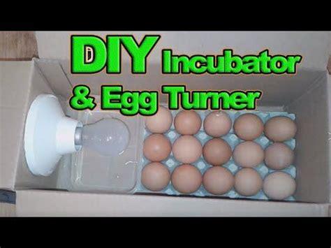 Como hacer una incubadora casera || HOW TO MAKE AN EGG ...