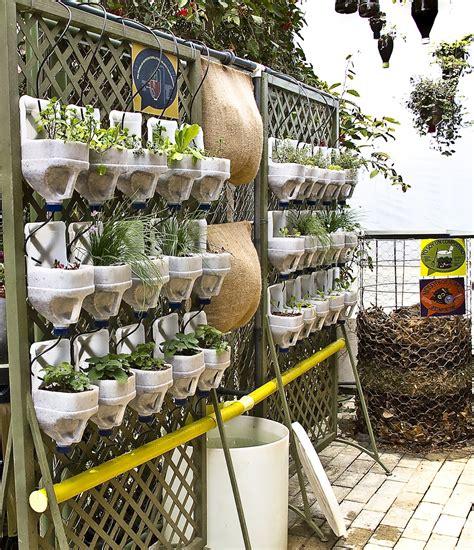 Cómo plantar hierbas aromáticas en casa   Cocinillas.es
