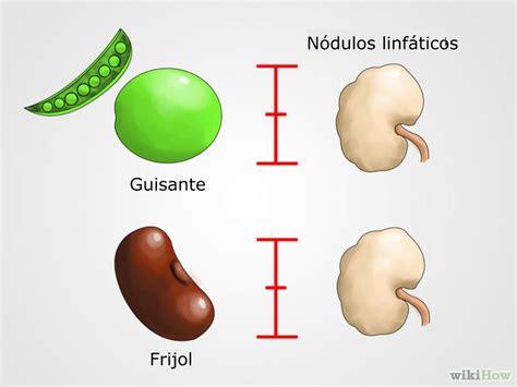 Cómo revisar los nódulos linfáticos: 10 pasos