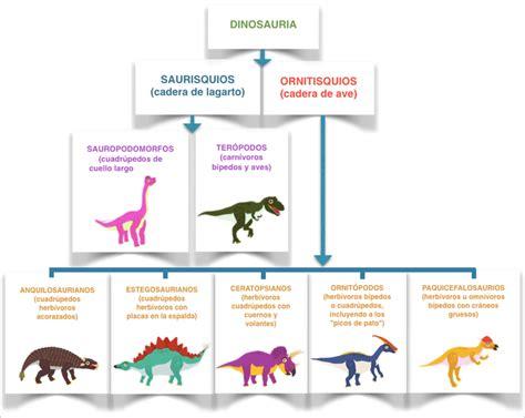Cómo se clasifican los dinosaurios   Dinofun App   Aprende ...