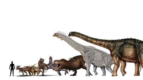 Comparación de Tamaño entre Dinosaurios   Comparación de ...