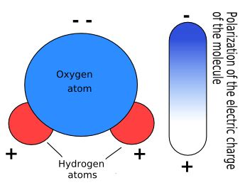 Composición química del agua   La guía de Biología