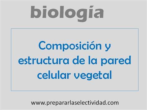 Composición y estructura de la pared celular vegetal   YouTube