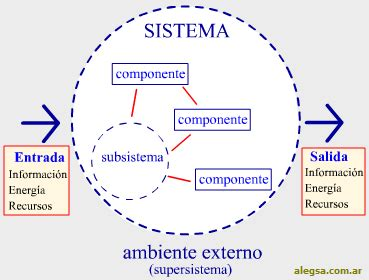 Concepto de sistema en la organización | Assentire