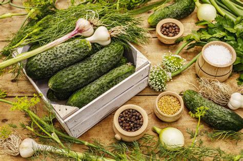 Concepto de verduras en vinagre. proceso de cocción ...