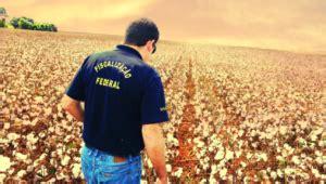 Concurso Ministério da Agricultura: certame está previsto ...