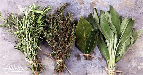 Condimentos para el pollo: hierbas aromáticas y especias