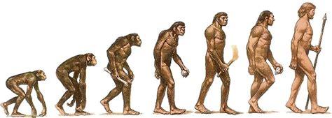 Conoce el ORIGEN Y EVOLUCIÓN DE LOS PRIMATES