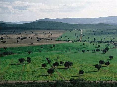 ¿Conoces los Parques Nacionales que hay en España?