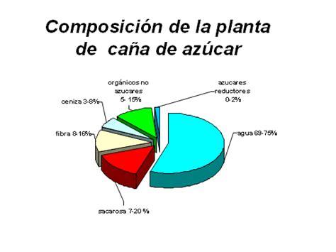 Conocimientos básicos de la caña de azúcar   Monografias.com