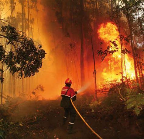 .: CONSECUENCIAS DEL CAMBIO CLIMATICO EN IMAGENES