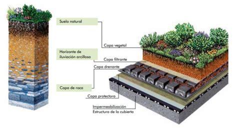 Consejos para armar un techo verde en tu casa   Aconcagua.lat