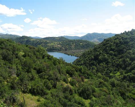 Conservación y Difusión de El Bosque Esclerófilo: BOSQUE ...