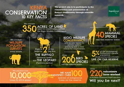 Conservation Volunteering in Kenya: Volunteer in Kenya