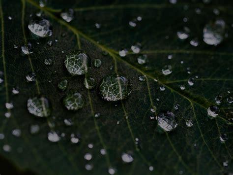 consultoria del agua   Green Globe Sostenibilidad y ...