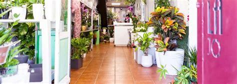 Contacto: comprar flores online valencia   Floristería ...