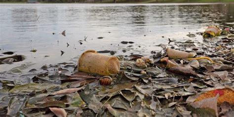 Contaminación del Agua   Concepto, causas y consecuencias