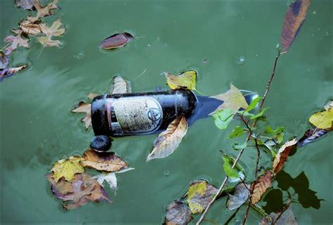 Contaminación del agua | Qué es, causas, fuentes, efectos ...
