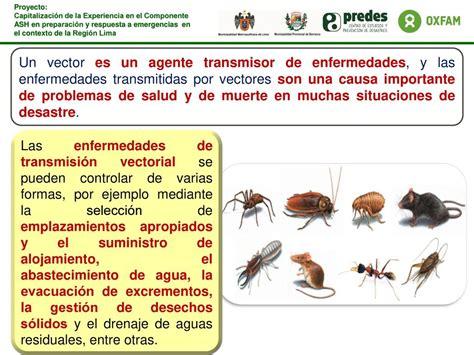 Control de enfermedades de transmisión vectorial   ppt ...