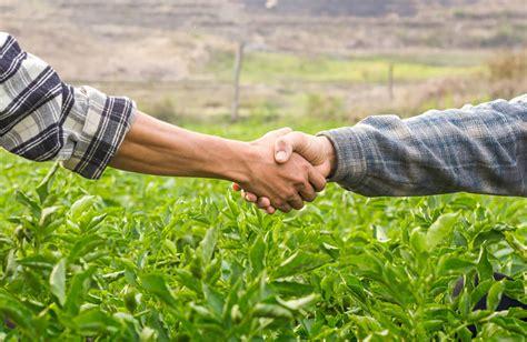 Convertir en una empresa agrícola con productos diversos ...