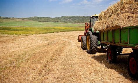 Convocatoria de Ayudas para la Agricultura Ecológica en ...