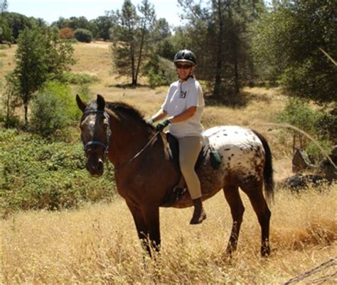 Cool Horse Trails, Cool, California Trails for horseback ...